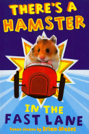 hamster in fast lane